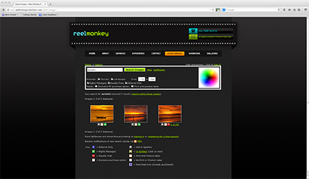 reelmonkey stock sunsets