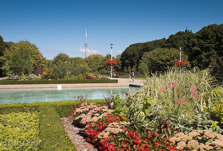 Toronto Island Park - Toronto, Canada